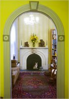 What to Decorate: Chartreuse