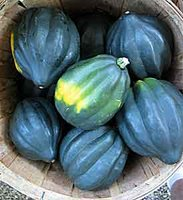 Recipe: Winter Squash