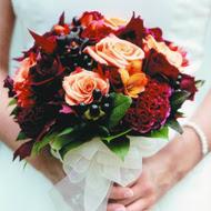 Ideas for a San Francisco Wedding
