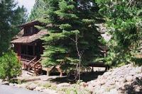 Inspired: Woodland Vacation