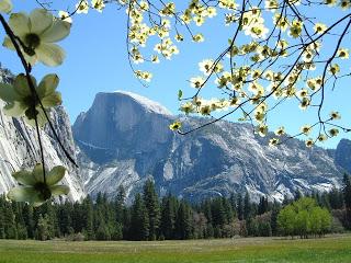 Road Trip: Yosemite
