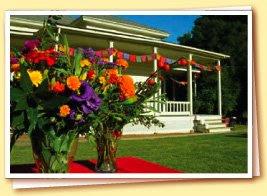 Wedding Wednesday: Farm at Putah Creek