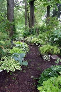 To Do: Shade Garden