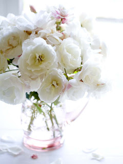 Things I Love Today: Garden Roses