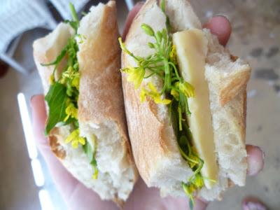 Recipe: Simple Picnic Sandwiches