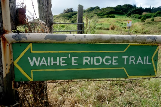 Hawaii: Hiking the Waihe'e Ridge Trail in Maui