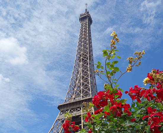 Paris Picnic No. 6: The Eiffel Tower and Musee Rodin