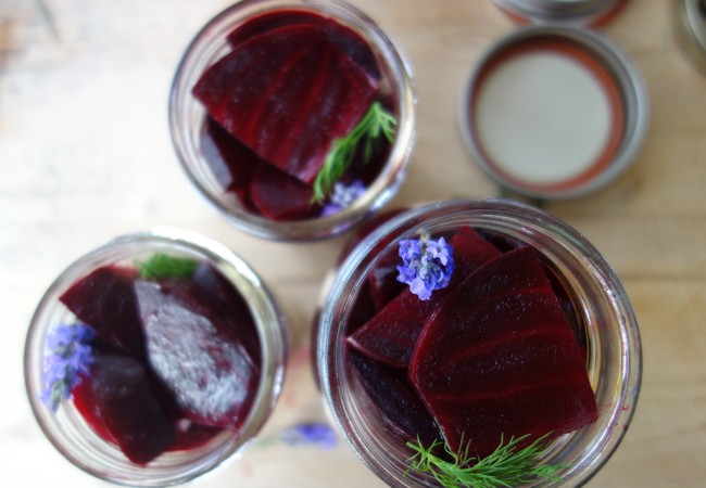 Lavender Dill Pickled Beets