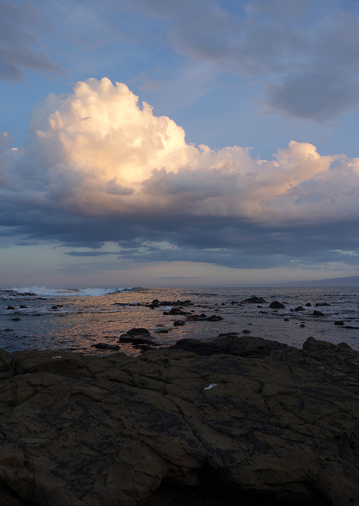 Sunset at Curio Bay, NZ