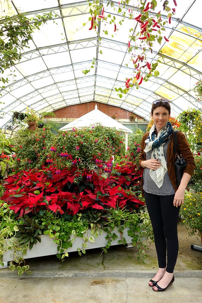 Queens Park greenhouse NZ