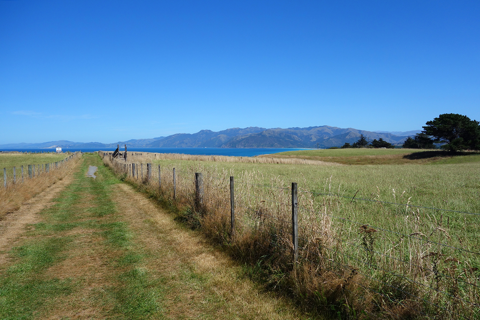 Hiking through farms in Kaikoura, NZ