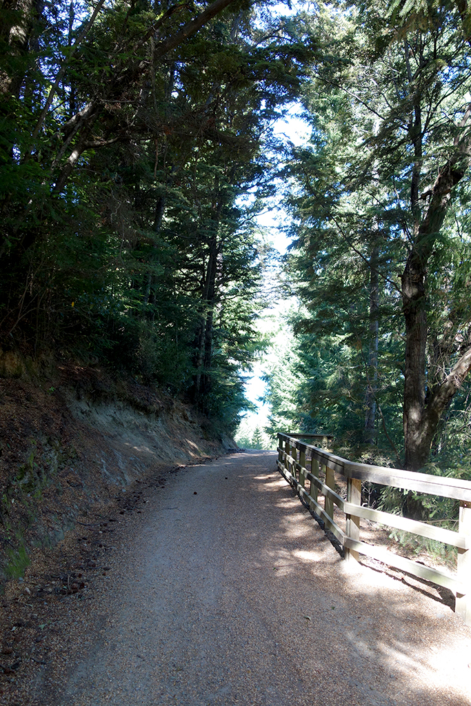 Fernhill to Queenstown hike path