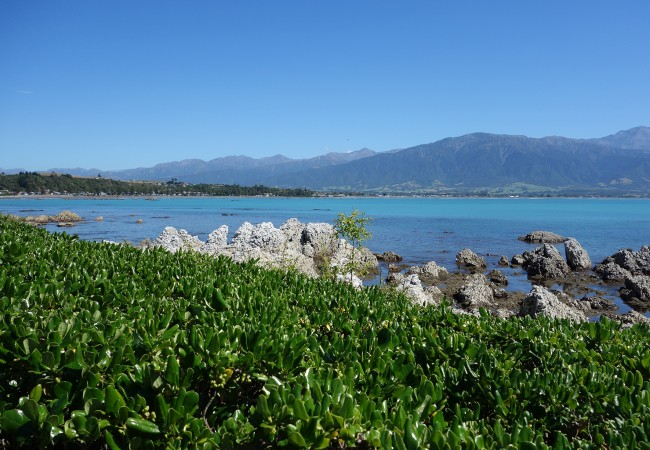 Crayfish Hike in Kaikoura, New Zealand