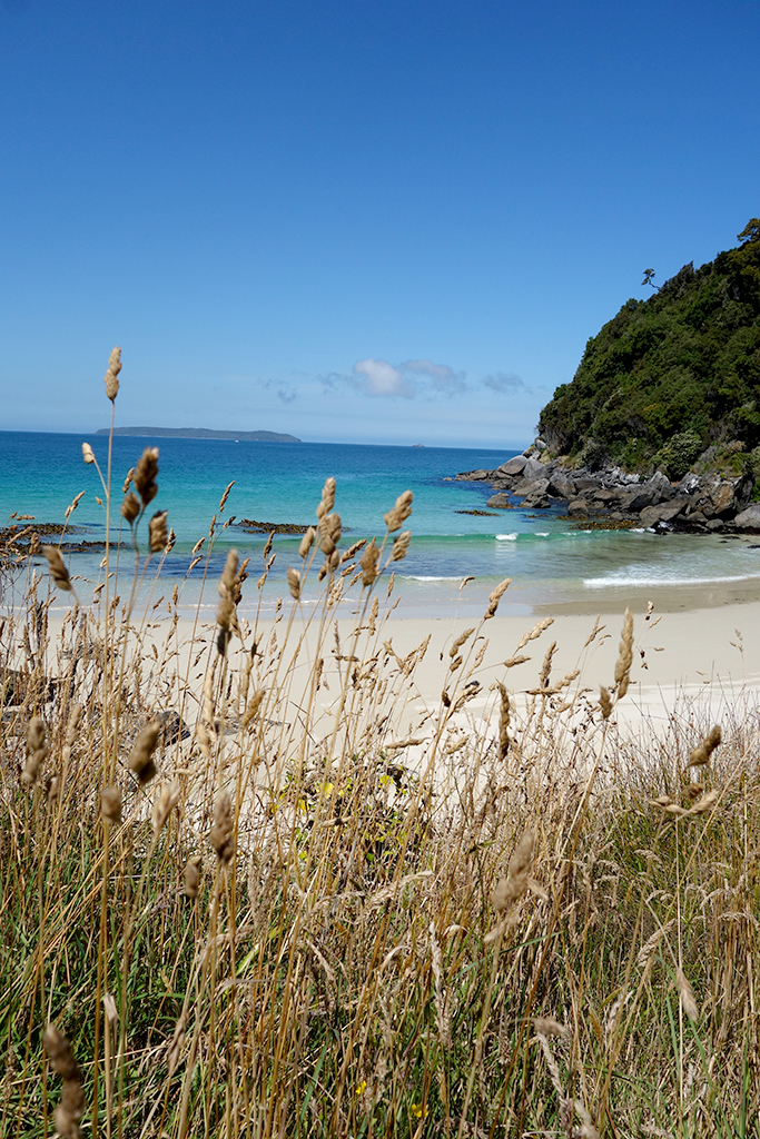 Beaches in Oban NZ