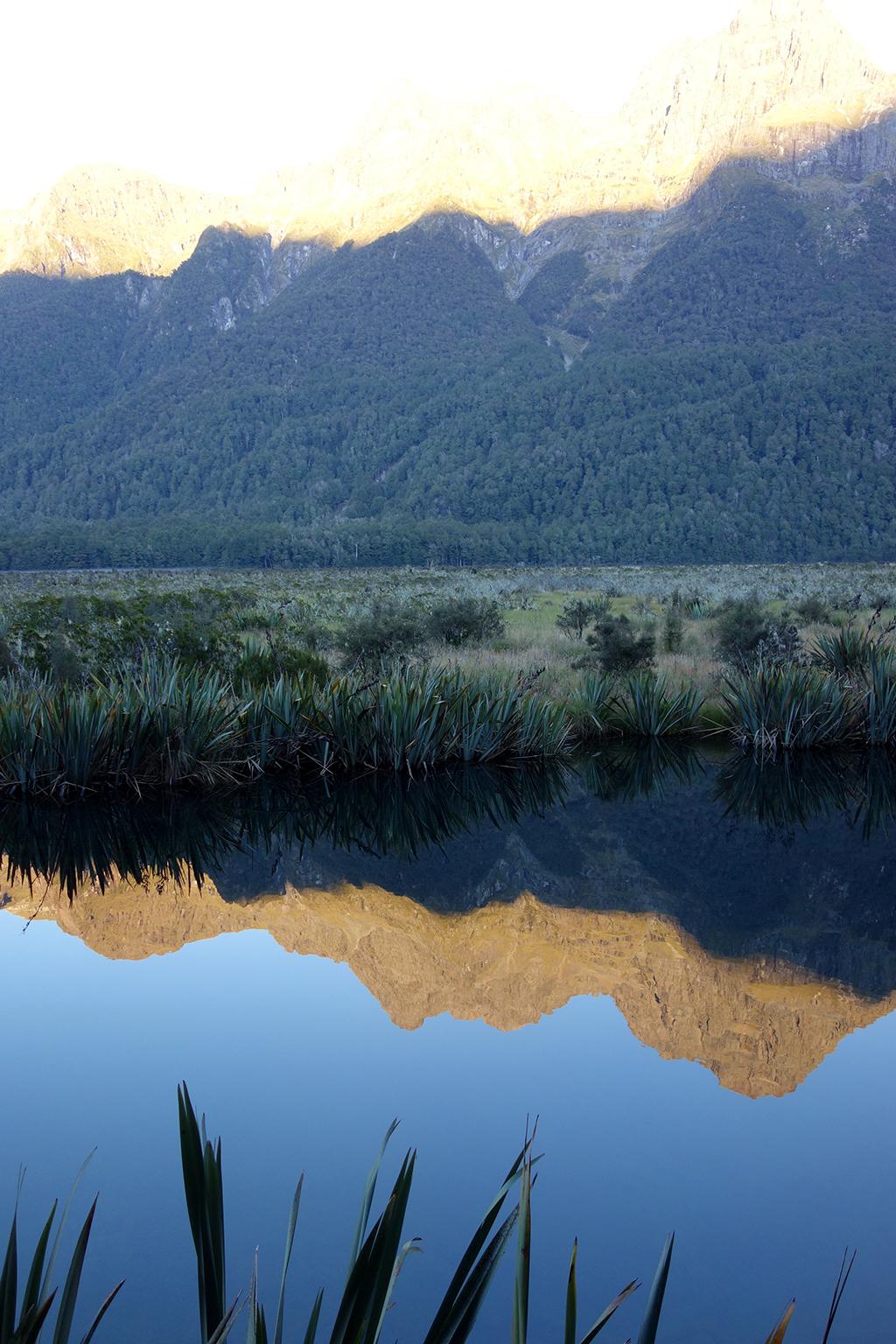 Reflection at Mirror Lake New Zealand