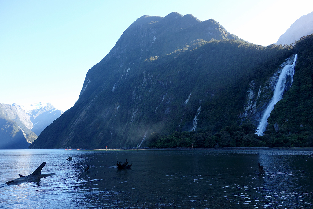 Milford Sound waterfall hikes