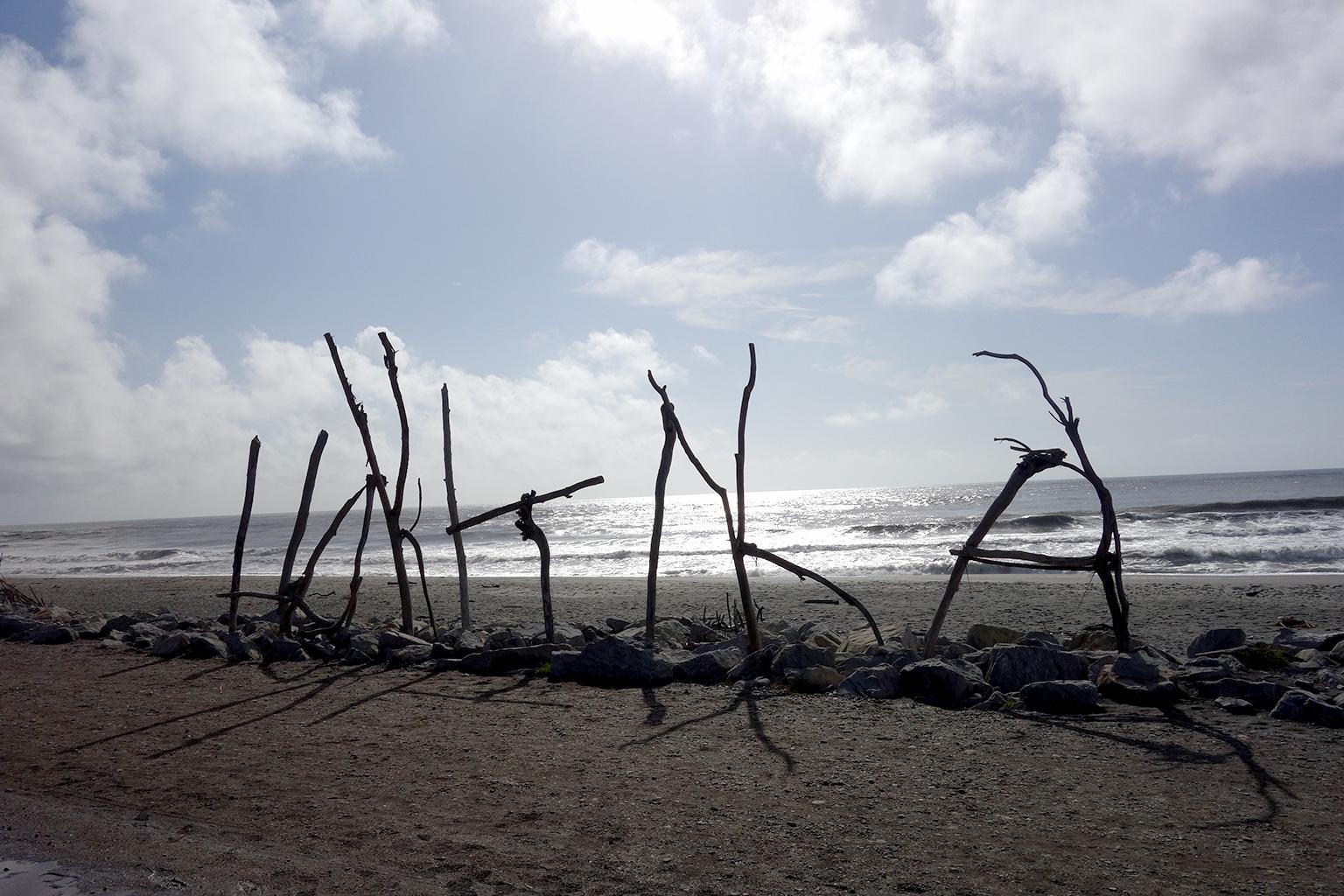 Hokitka's famous driftwood