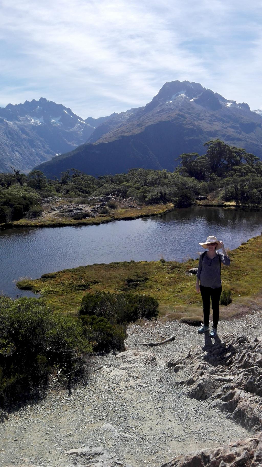 Nature Walk, Key Summit Treck, New Zealand