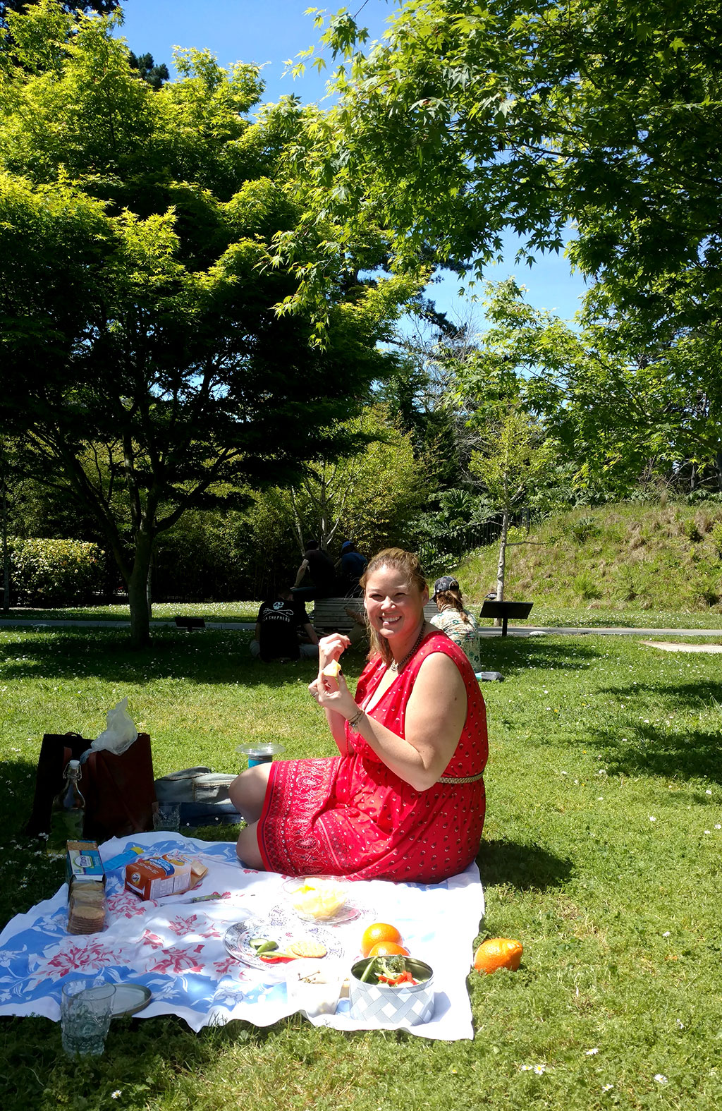 de Young picnic