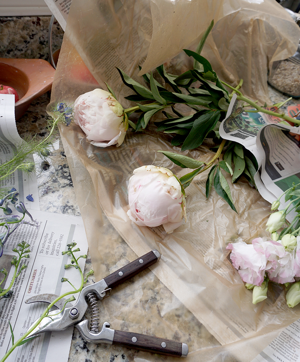 Peonies for flower arranging