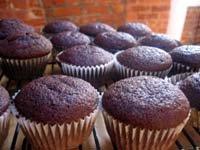 Crafty: Cupcake mania!