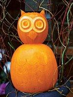 Hostess: Owl Party