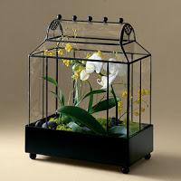 Inspiration: Tabletop Terrarium