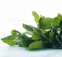 To Do: Fresh Mint