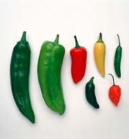 Things I Love Today: Fresh Peppers
