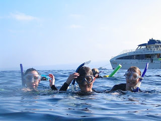 To Do in Maui: Snorkel