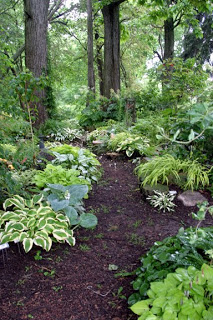 To Do: Shade Garden