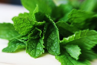Things I Love Today: Fresh Mint