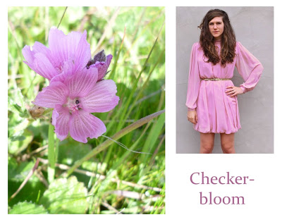 Flower Week: Checker-bloom