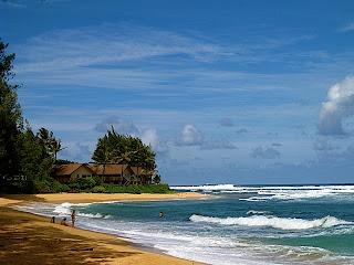 Hawaii: Island Inspiration