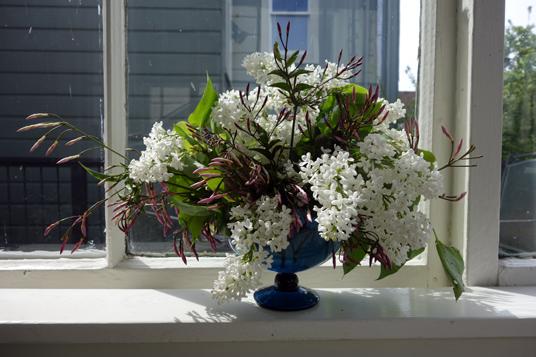 Flowers: Lilac and jasmine