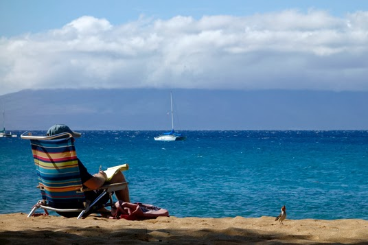 Hawaii: Exploring the North Shore of Maui