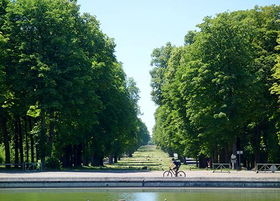 Rob mountain biking around Saint-Cloud in Paris