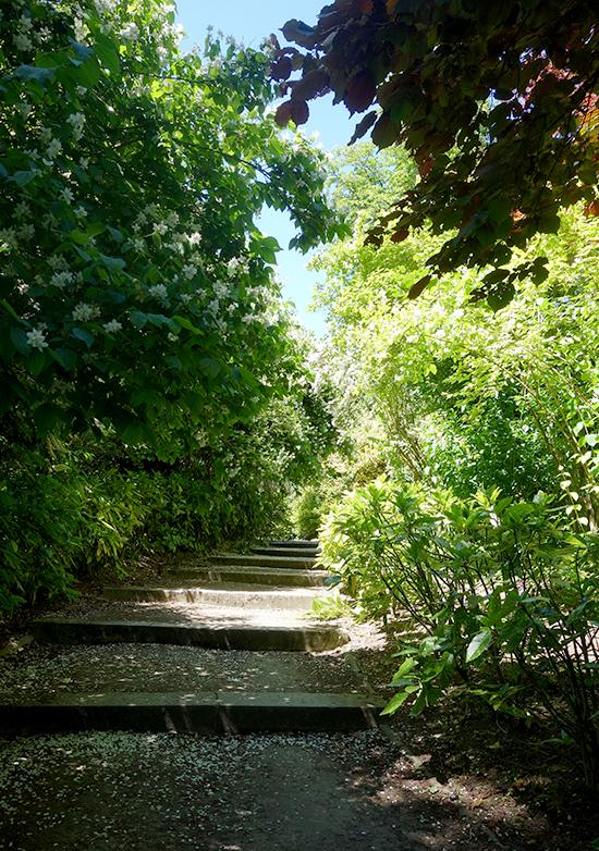 Exploring the gardens of Parc de Saint-Cloud