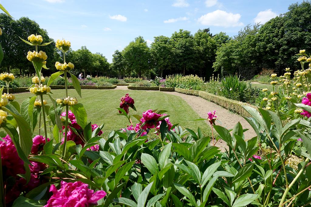 Versailles Peony Gardens Petite Trainon