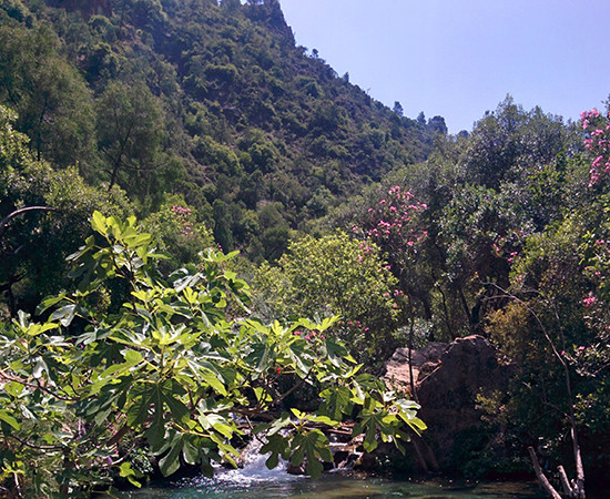 Hiking to the Akchour Waterfalls in the Rif Valley of Morocco