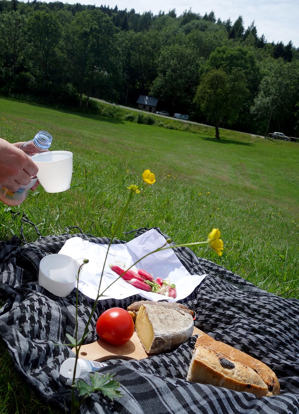 Annecy picnic at Les Puisots