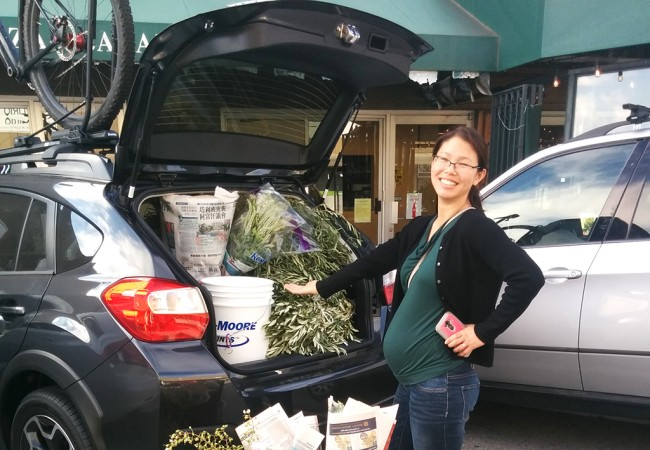 How to Buy Wedding Flowers at the San Francisco Flower Mart