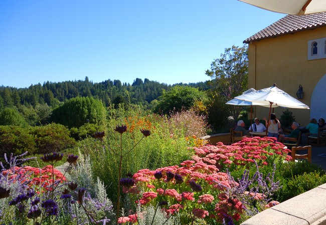 A Spanish-Style Picnic in Sonoma Wine Country