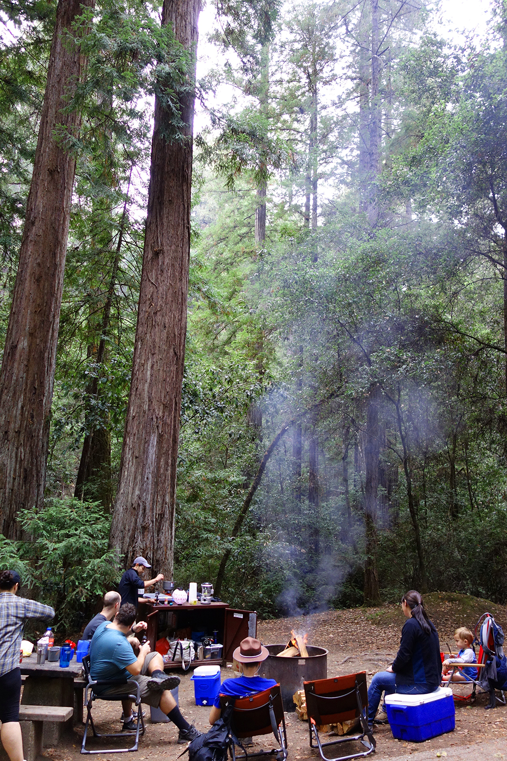 Fire at Portola Redwoods