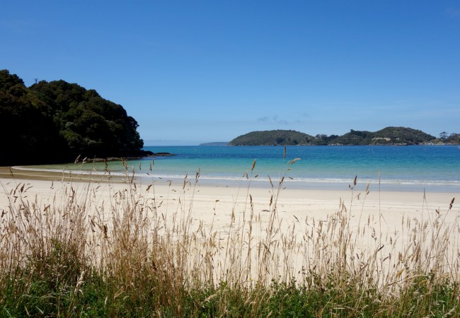 Two Days on Stewart Island, New Zealand