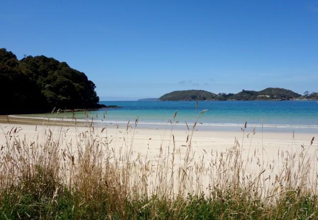 Two Days on Stewart Island, New Zealand