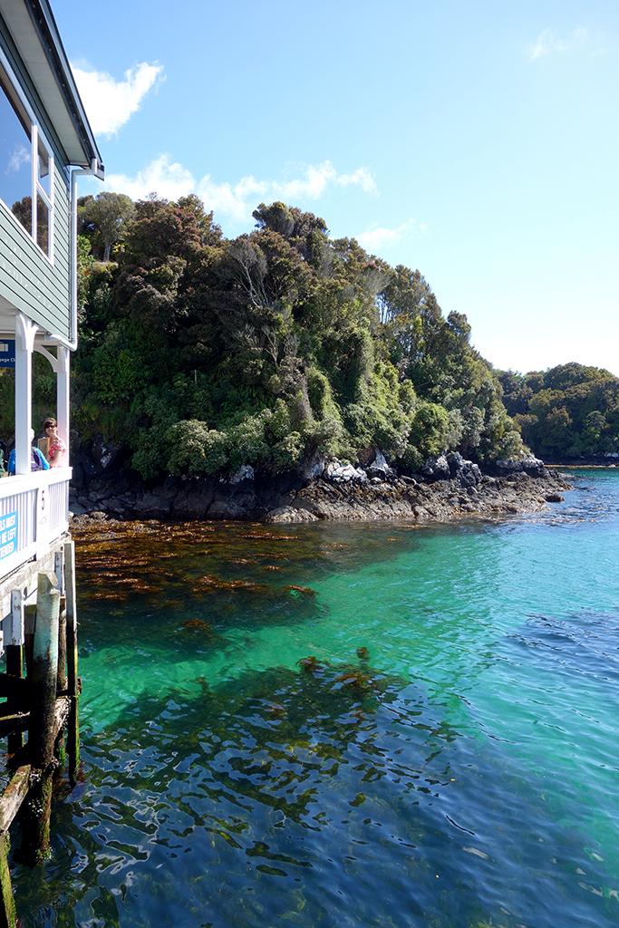 Oban Harbour, NZ