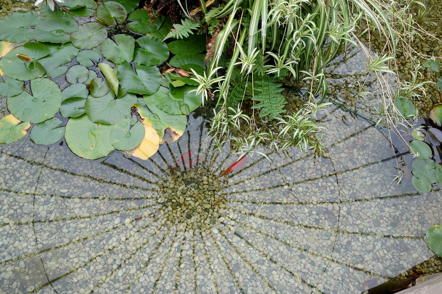 Invercargill garden