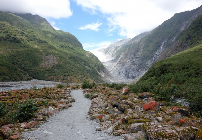 An Icy Exploration of Franz Josef and Fox Glaciers in New Zealand