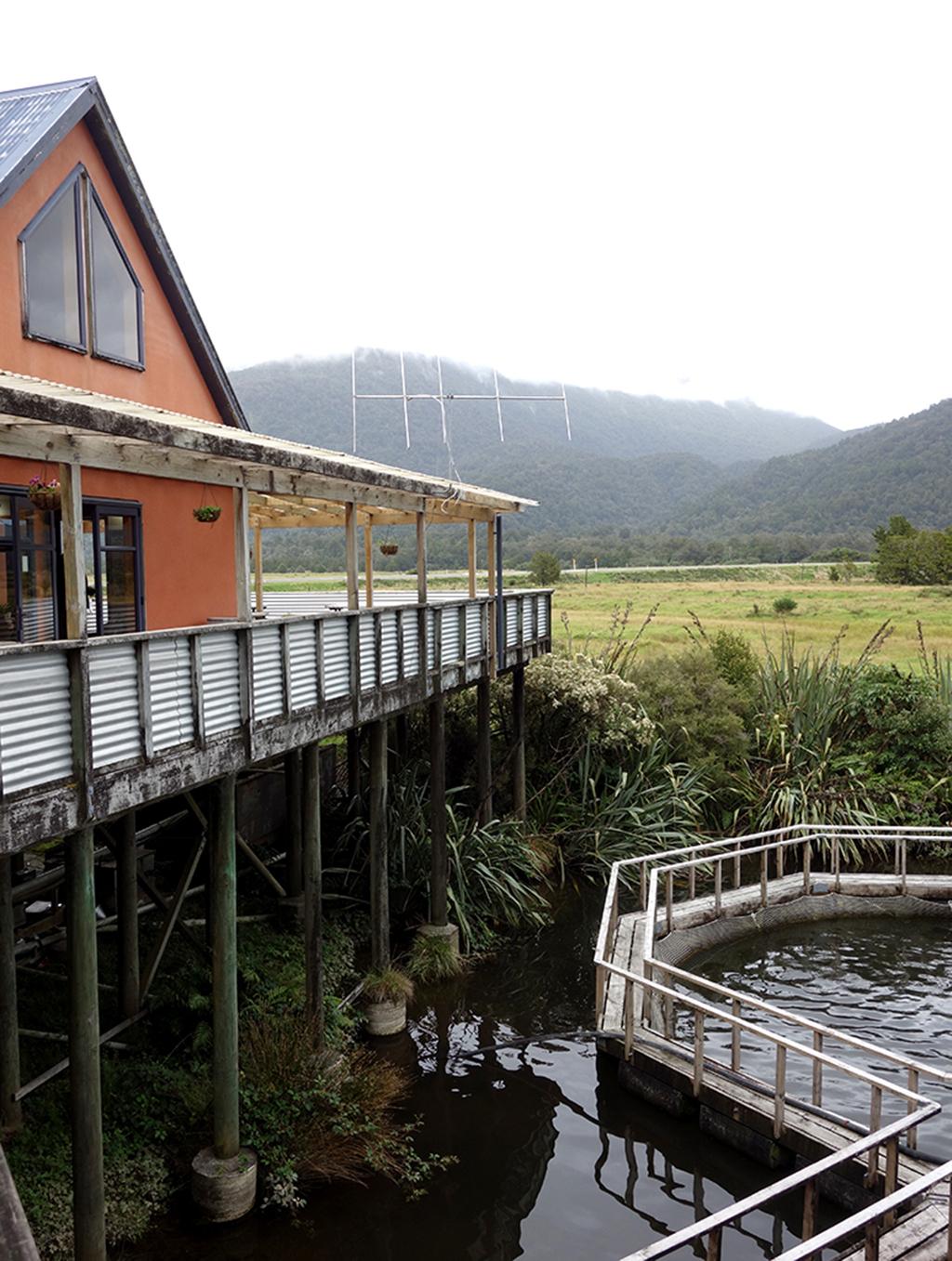 New Zealand Salmon Farm